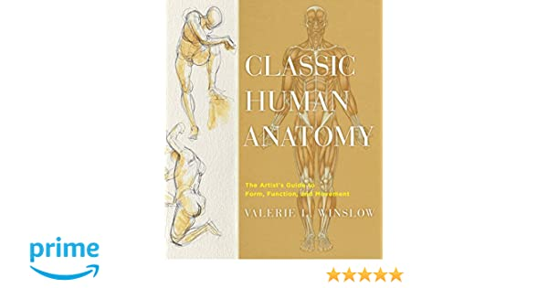 Buy classic human anatomy the artists guide to form function buy classic human anatomy the artists guide to form function and movement book online at low prices in india classic human anatomy the artists guide fandeluxe Gallery
