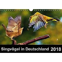 Singvögel in Deutschland (Wandkalender 2018 DIN A4 quer): Ein Vogelkalender mit herrlichen Impressionen unserer Singvögel (Monatskalender, 14 Seiten ) ... Tiere) [Kalender] [Apr 01, 2017] Klapp, Lutz