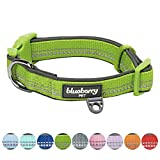 Blueberry Pet Soft & Comfy 3M Reflective Pastel Baby Green Adjustable Padded Dog Collar, Large, Neck 45cm-66cm, Adjustable Collars for Dogs