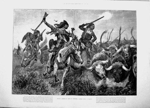 1891-indiens-nord-americains-courant-des-betail-dans-des-armes-woodville-de-chevaux-de-ranch
