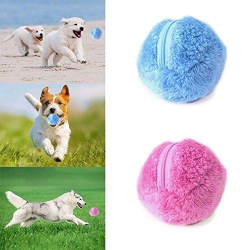 Dragon Honor Lustiger, elektrischer Spielball für Hunde - hält Ihren Hund aktiv und gesund