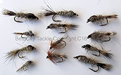 Fly Fishing Nymphs HARES EAR GRHE Selection with 12 fly pack size 10-16 trout flies PACK#2 from BestCity Tackle