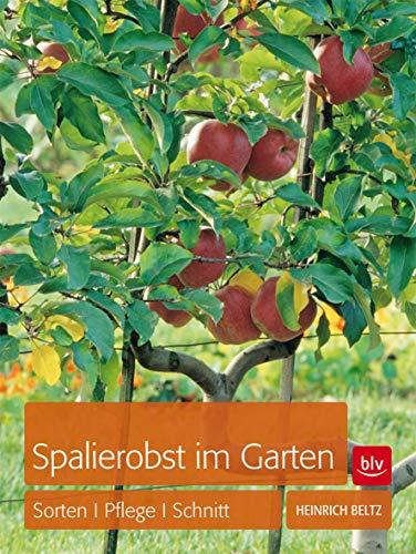 Spalierobst im Garten: Sorten, Pflege, Schnitt (BLV) - Schnitt, Pflege