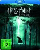 Harry Potter und die Heiligtümer des Todes (Teil 1) (limited Steelbook 2-Disc, exklusiv bei Amazon.de) [Blu-ray]