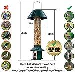 Squirrel Proof Wild Bird Feeder - Roamwild PestOff (Mixed Seed / Sunflower Heart Feeder) 16