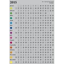Der Springende Punkt 2015 silber-metallic