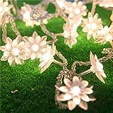 Egomall 10M 100 LED Lotus-Blumen-Girlanden-Lampen Lichterketten für den Innen- und Außen Hochzeit / Weihnachten Partei (warmweiß)