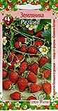 AGROBITS Erdbeeren remontant Regina Run gh Qualität sehen