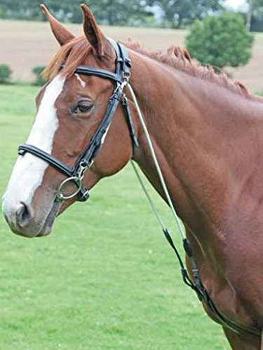 Shires AVIEMORE CHAMBON TRAINING AID HORSE EQUESTRIAN TRAINING LEARNING TEACHING 1