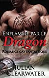 Enflammé par le dragon: Romance gay fantastique