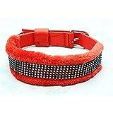 Petshop7 High Quality & Stylish Nylon Dog Collar -1.25 Inch -Large (Red)