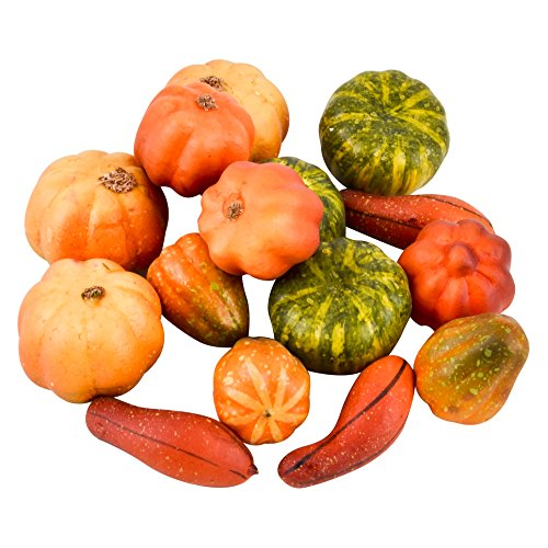Dadeldo Living & Lifestyle Bastel 15er Set Kürbis Herbst Natur Deko 2-3-4cm orange grün ()