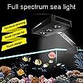 Shuaienfushi LED Aquarium Light pour Aquarium Platypus Corail pour Aquarium 30-50cm -30W