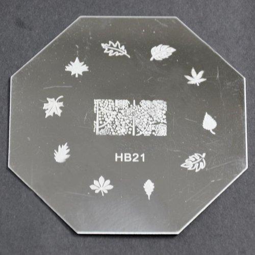 Nail Art emboutissage des tôles - HB21 CODE : HB21-plaque