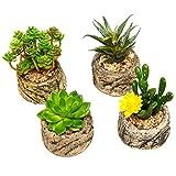 Set Assortito di 4 Mini Piante Grasse Artificiali Finte Verdi con Ghiaietto Vasetto in Cemento Simil-Pietra