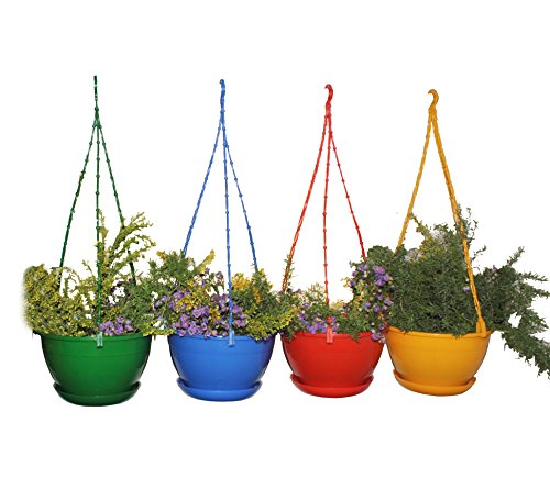 First Smart Deal Plastic Hanging Pot Multi - Pack of 4