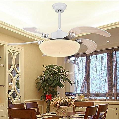 Ventilador de estilo simple moderna lámpara de techo de luces,control remoto 5
