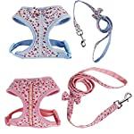 Floral Pattern Tiny Small Dog Harness Leash Lead Walking Chest Strap (S, Blue) 20