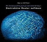 Mit Selbstcoaching zum persönlichen Erfolg I: Destruktive Muster auflösen - Marian Zefferer BSc. MSc