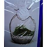 Papel de regalo de celofán - transparente 60304