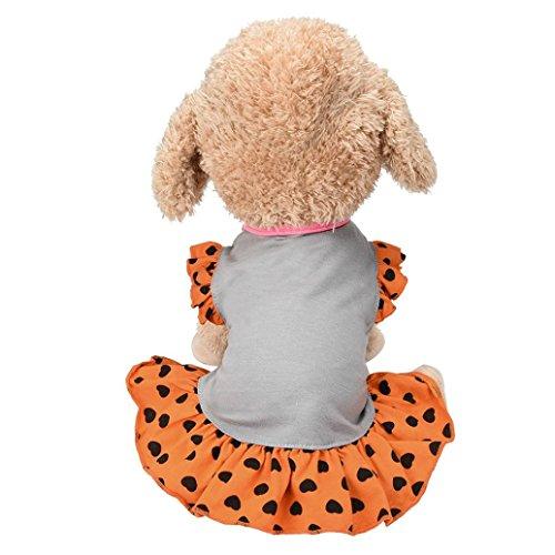 Ninasill Ausverkauf. Haustier Kleidung, ღ ღ Exklusive Kleine Hund Kleid Fashion Pet Hunde-T-Shirt Kleid Hund Katze Niedliches Sommer-Weste Rock Casual Large Grau (Hund Modische Kleid)