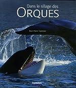 Dans le sillage des orques de Jean-Pierre Sylvestre