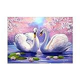 Dos cisnes blancos 5D Diamond pintura bordado DIY punto de cruz decoración del hogar