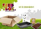 Kit de Germinados: Cultivar Brotes Judías y Soja Verde ECO