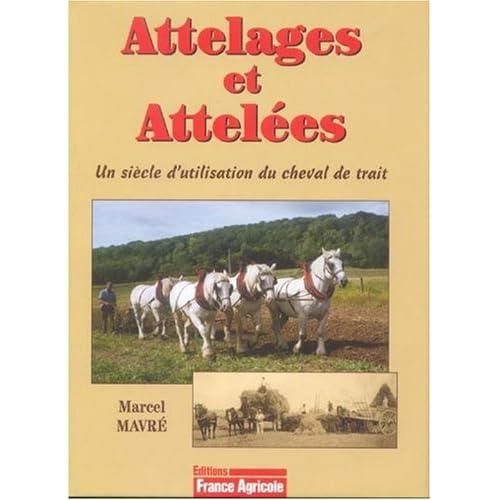 Attelages et Attelées : Un siècle d'utilisation du cheval de trait