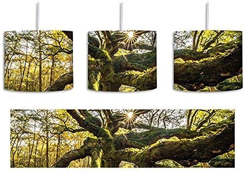 gigantisch verwzeigter Baum inkl. Lampenfassung E27, Lampe mit Motivdruck, tolle Deckenlampe, Hängelampe, Pendelleuchte - Durchmesser 30cm - Dekoration mit Licht ideal für Wohnzimmer, Kinderzimmer, Schlafzimmer