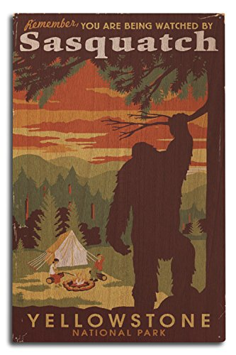 Park-Sie durch Sasquatch überwacht werden, holz, mehrfarbig, 10 x 15 Wood Sign ()
