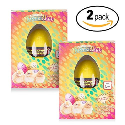 Juego de 2 huevos Haz Crecer tu Propio Polluelo que eclosionan - Regalo de Pascua ideal.