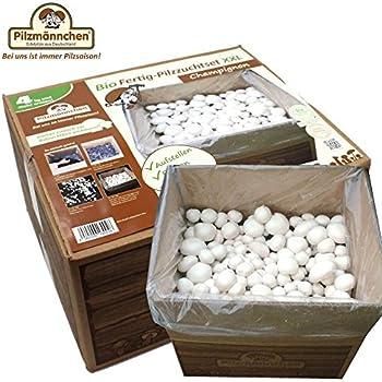 xxl bio champignon pilzzuchtset pilze selber z chten garten. Black Bedroom Furniture Sets. Home Design Ideas
