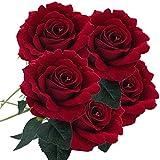 Schön Unechte Blumen, Sonnena 5 Stück Gefälschte Blumen Rosen Seide Kunstblume Bridal Bouquet Hochzeit Blumenstrauß Party Garten Blumen-Bouquet Hortensie Dekoration Wohnaccessoires (D)