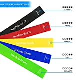 Resistance Loop Bands, Exercise Bands, TechRise Set of 5 Natural Latex Fitness Bands for Workout and Physical Therapy, Pilates, Yoga, Rehab, Improve Mobility and Strength