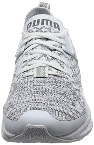 Puma Herren Ignite Evoknit Lo Hypernature Outdoor Fitnessschuhe Weiß (White-Quarry-Quiet Shade)