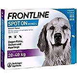 Frontline Spot on H40, 6 Stück