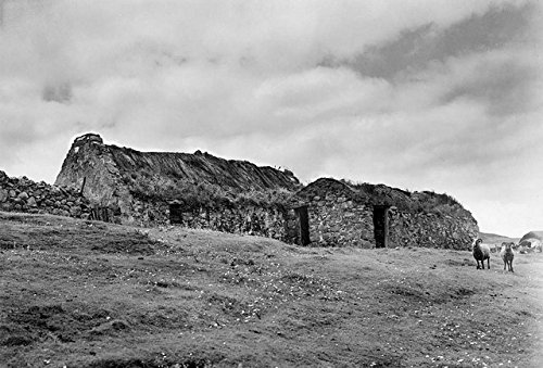 poster-a3-sweden-buildings-effirth-shetland-islands-uk-buildings-and-sheep-effirth-shetland-mainland