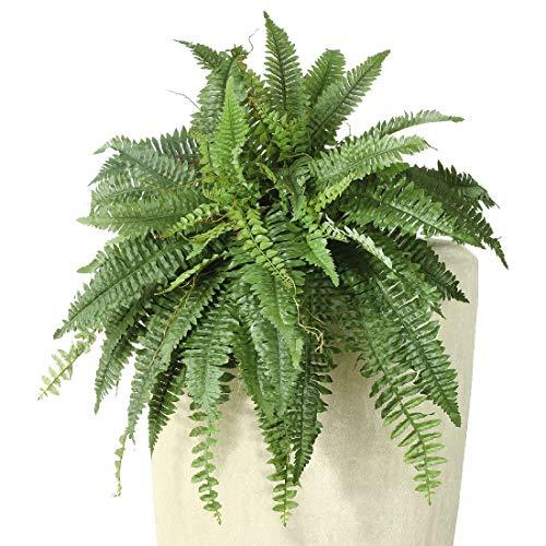 Bellaflor Farnbusch grün Länge 60 cm und 28 Blätter