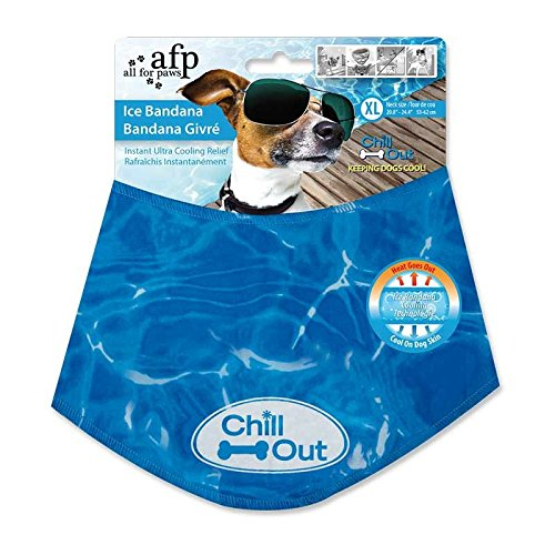 All For Paws Chill OutIce Bandana X Large