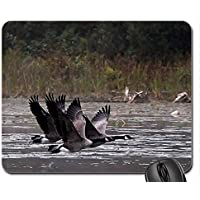 Canada Geese in Flight Mouse Pad, Mousepad (Birds Mouse Pad)