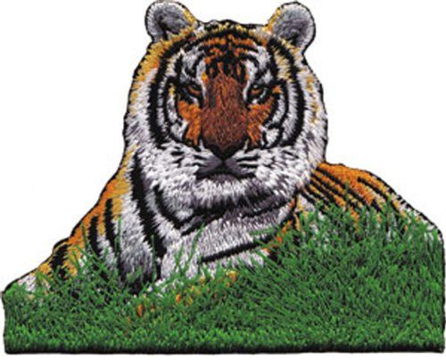 Application Tiger in Grass Patch