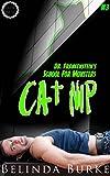 Best Cat Nips - Cat Nip Review