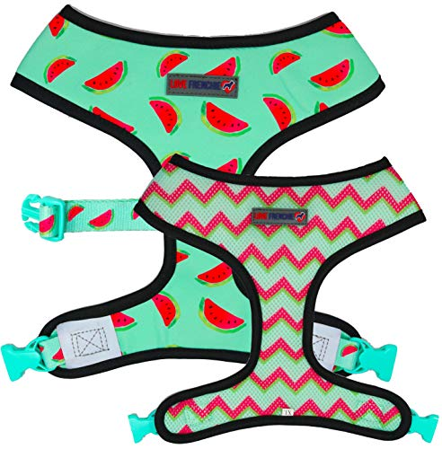 Love Frenchie - Bulldog Francese Reversibile Harness - (Tutti Frutti, M)