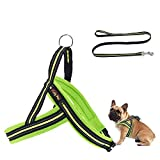 Kelly Pets Hundegeschirr mit Leine, reflektierend, Größe S, Grün