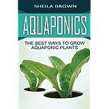 Aquaponics: The Best ways to Grow Aquaponic Plants