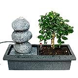 Indoor-Bonsai mit Zimmer-Brunnen 'Balance' - 3 Kieselsteine - Easy Care System