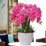 LOF-fei Kunstpflanze Orchidee Künstliche Blumen Simulation Phalenopsis Tisch Zubehör für Büro oder & Außenbereich Bonsai Heim Dekoration Seide,Rose rot mit Topf