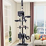 PURLOVE Cat Tree Floor to Ceiling, Cat Tower 240-260cm Activity Centre with Scratching