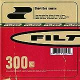 Songtexte von Filter - Short Bus